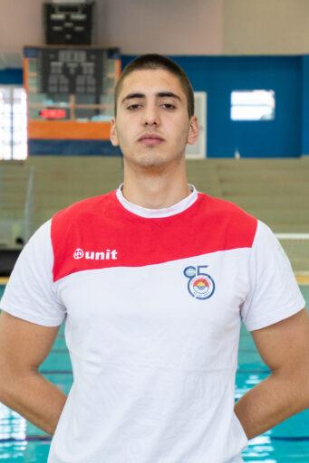 Pavle Gavrilović